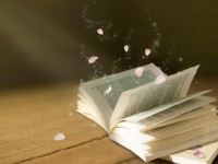 你是否读书太少而想得太多呢?