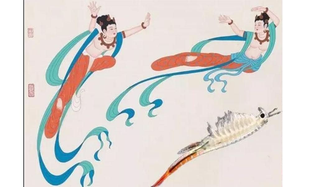 02_史前物种仙女虾,2亿年前曾与恐龙同时代生活_壁画