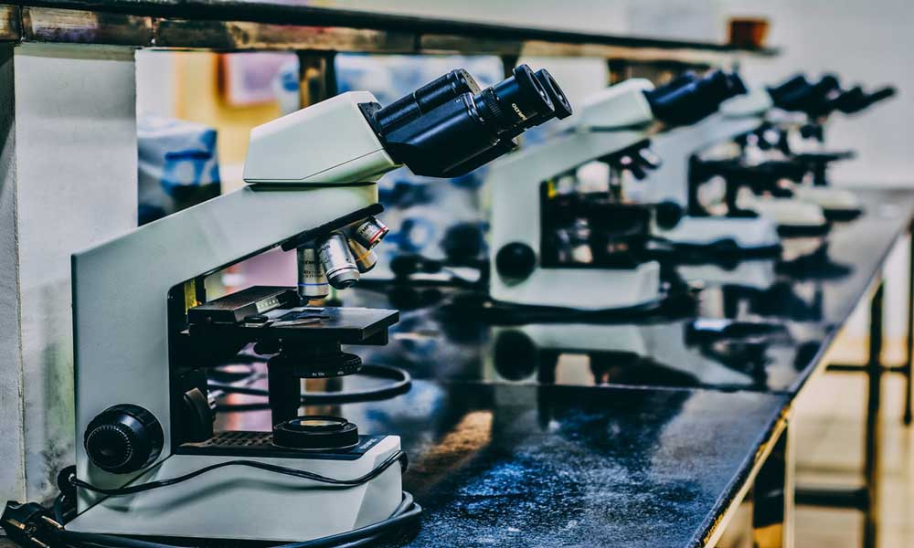 00_DNA祖源测试真的可以救人,但也可能给你造成难以解释的麻烦!